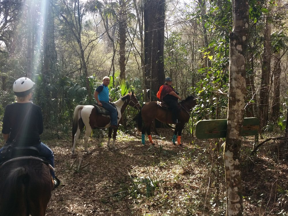 Just horse'n around riding stable: 6194 West State Road 44, Lake Panasoffkee, FL