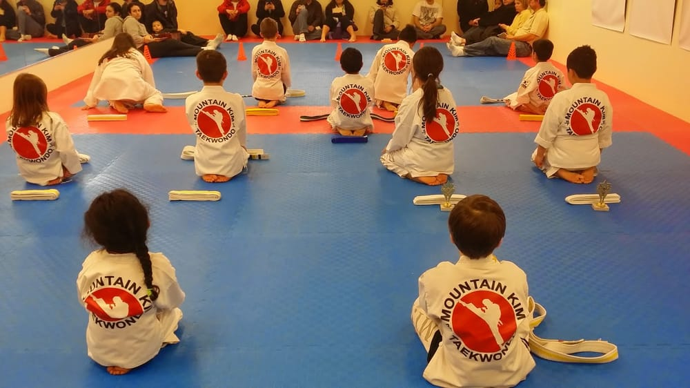 Master Kim's Taekwondo Martial Arts: 707 E Market St, Leesburg, VA