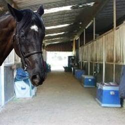 Norco Equestrian Academy 26 Photos Horseback Riding