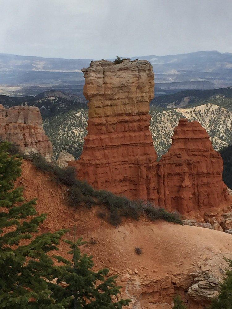 Agua Canyon: Bryce, UT