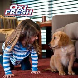 Photo of Oxi Fresh Carpet Cleaning - Schaumburg, IL, United States