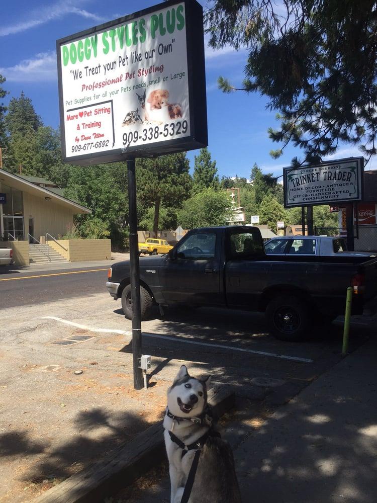 Doggie Styles: 23833 Lake Dr, Crestline, CA