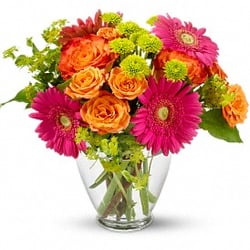 Julia Flowers - Get Quote - Florists - 385 Fredrick Street ...