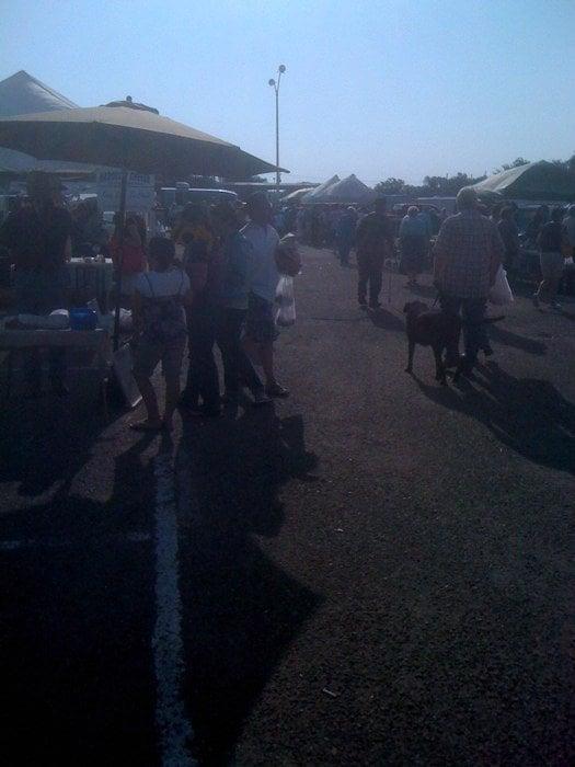 Golden Spread Farmers Market: 3701 Plains Blvd, Amarillo, TX