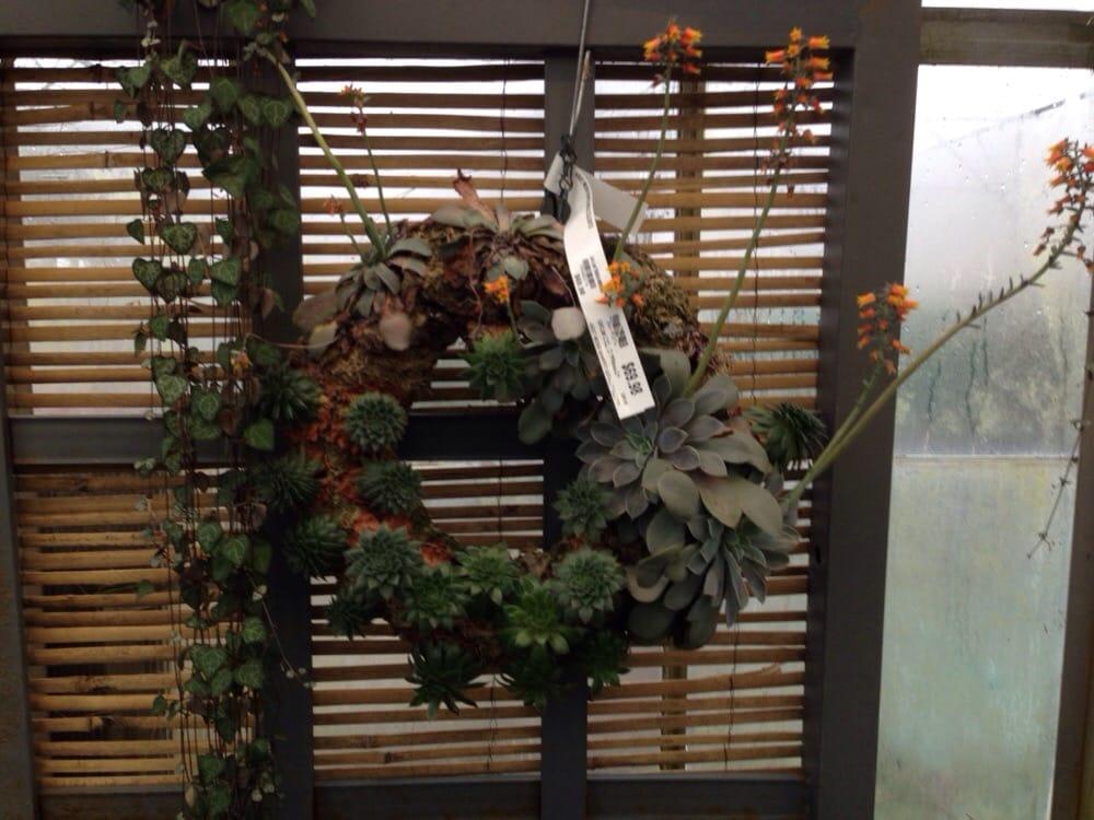 Succulent Wreaths Yelp