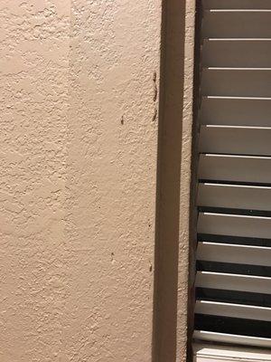 Budget Brothers Termite Pest Elimination 610 E Bell Rd Phoenix Az Control Mapquest