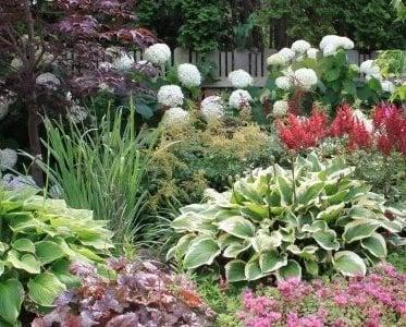 Arcadia Gardens, LLC: Stevensville, MI