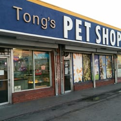 tong s tropical fish pet and supplies 20 photos 19