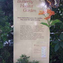 the smithsonian butterfly habitat garden 10 fotos. Black Bedroom Furniture Sets. Home Design Ideas