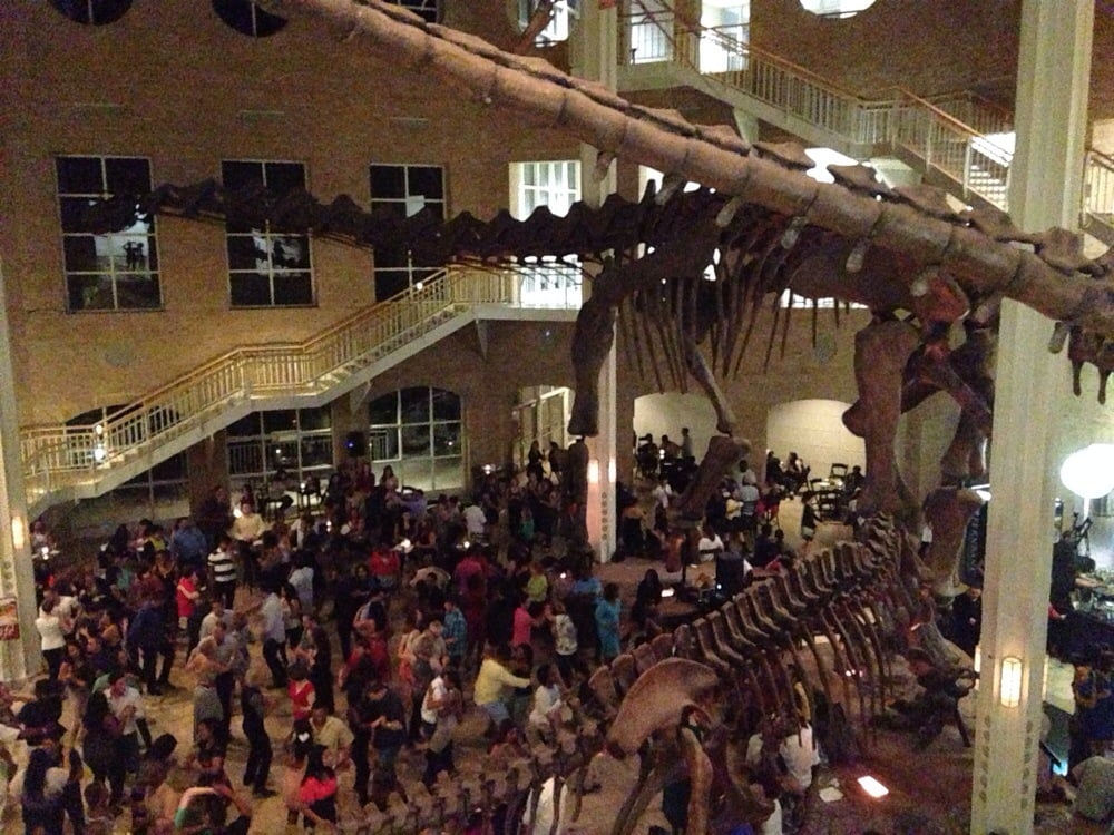 Today's top 6 Fernbank Museum Of Natural History jobs in United States. Leverage your professional network, and get hired. New Fernbank Museum Of Natural History jobs added daily.