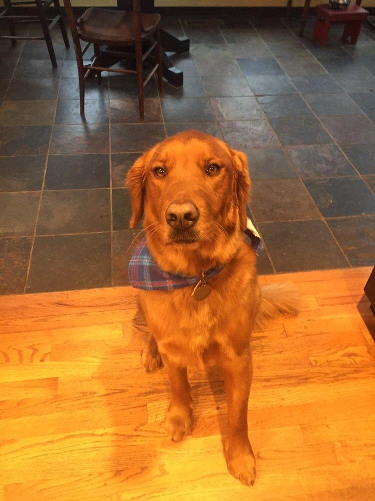 Tier Haus Pet Grooming Salon & Daycare: 5083 Glencrossing Way, Cincinnati, OH