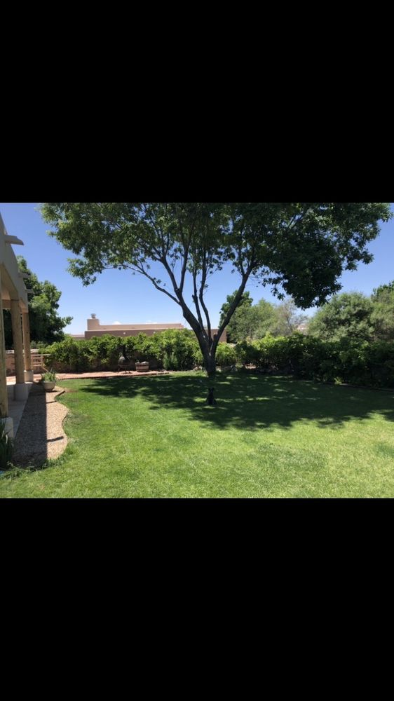 Clean-Cut Lawn Service, Inc: 5369 Dona Ana Rd, Las Cruces, NM