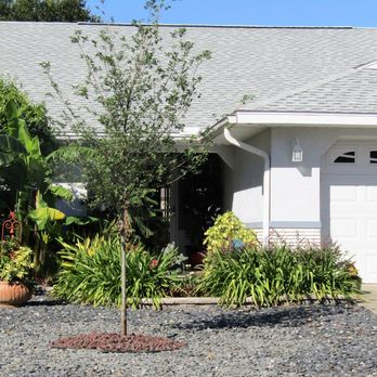 Spurling Landscaping Nursery Landscaping 5900 Sw 80th