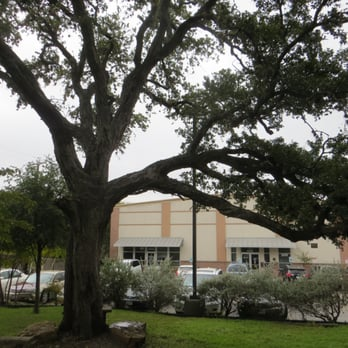 Round Rock Area Serving Center Photos Community ServiceNon - How old is united states