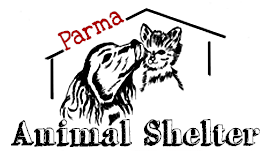 Parma Animal Shelter: 6260 State Rd, Cleveland, OH