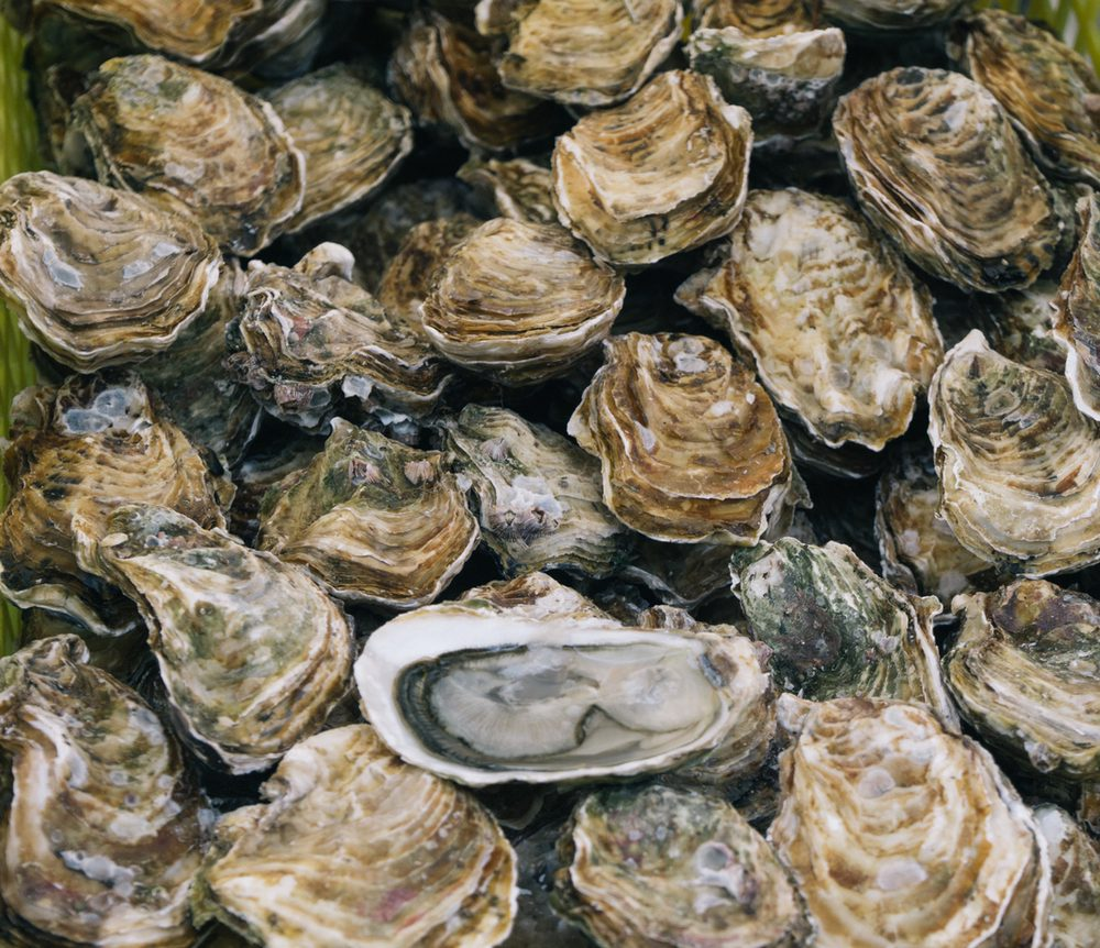 Fishermen's Catch Market & Restaurant: 31 Marina Blvd, Pittsburg, CA