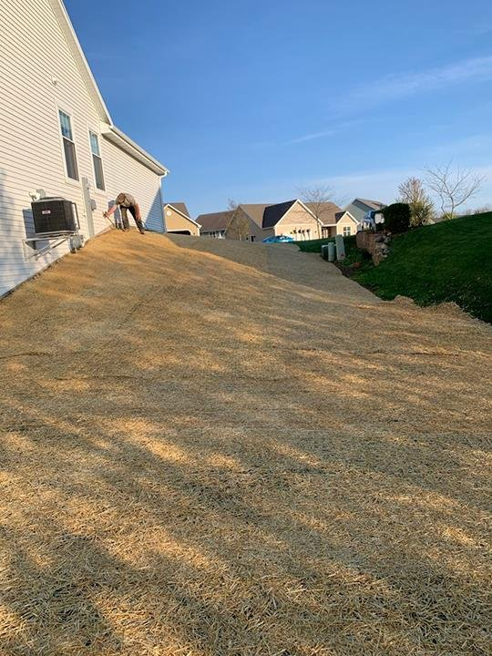 Watertown Forever Green Lawn Care & Property Maintenance: Watertown, WI