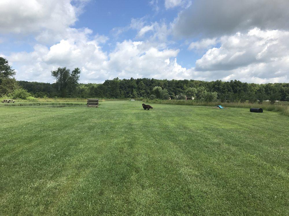 Tom Harvey Memorial Dog Park: 11704 OH-730, Blanchester, OH