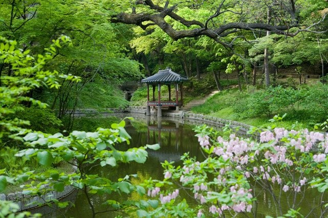 Changdeokgung Palace, The Secret Garden, Seoul, South ...