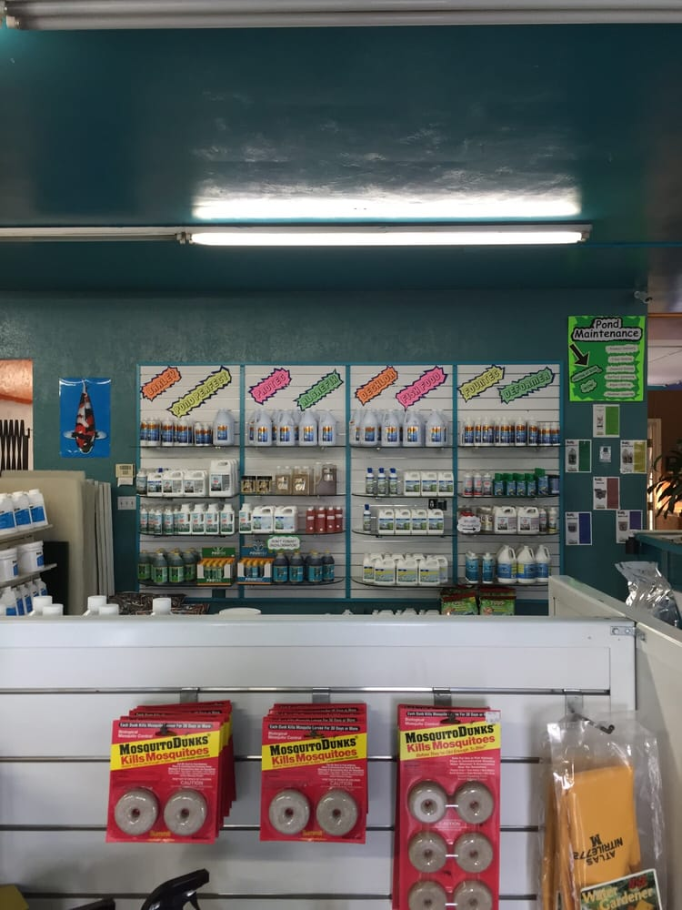 Oasis pond maintenance supply local fish stores 881 for Local pond supplies