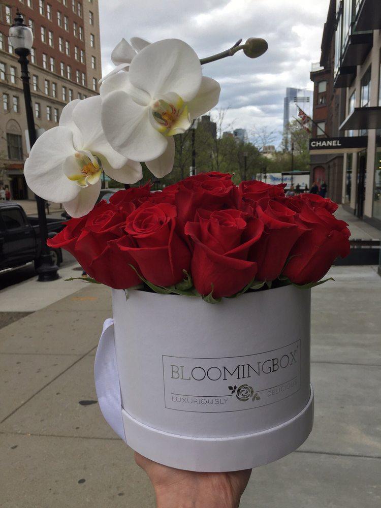 Blooming Box: 321 Walnut St, Newton, MA