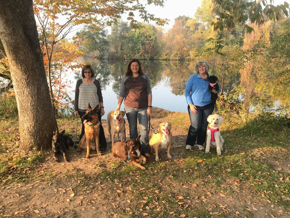 Bone-a-Fide Dog Training: Manteca, CA