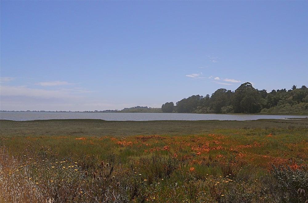 Bolinas Lagoon: Bolinas, CA