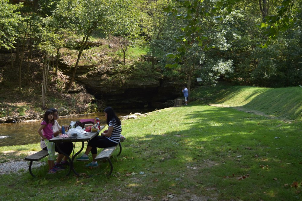 Mountain Springs Trout Park: 2549 State Highway O, Highlandville, MO