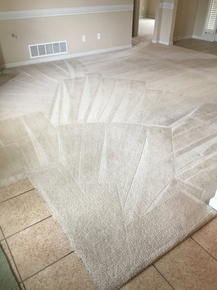 Todd Carpet Cleaning: 1331 Union Ave, Memphis, TN