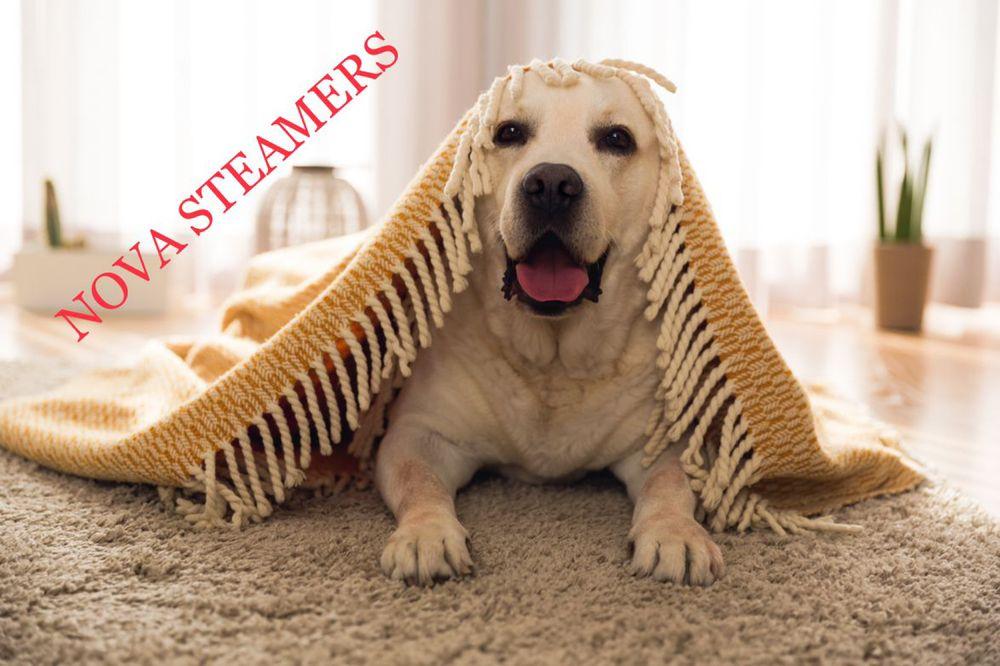 NOVA Steamers