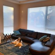 blinds window best treatment contact houzz seattle coverings in professionals traditional