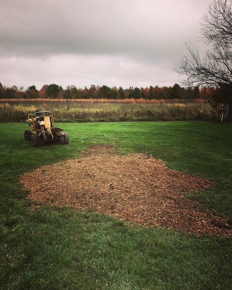 Ensley's Tree Care: 223 Mulberrie Point Rd, Frederica, DE