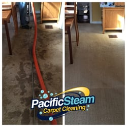 Pacific Steam Carpet Cleaning 28 Photos Carpet