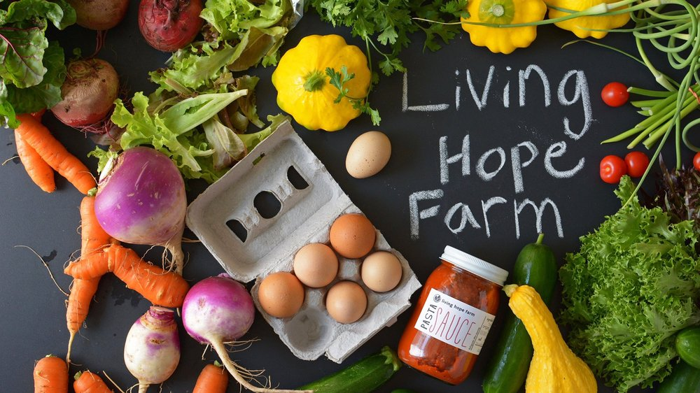 Living Hope Farm: 461 Indian Creek Rd, Harleysville, PA