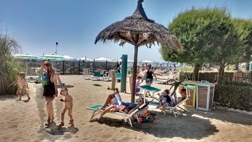 Foto su il cavalluccio marino yelp for Immagini cavalluccio marino