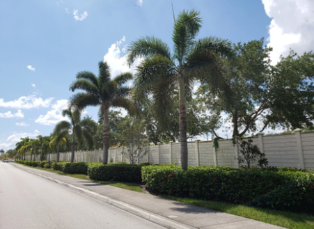 Nunez Lawn Care & Landscaping: 3650 SE 36th Ave, Okeechobee, FL