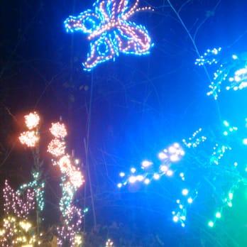 Bellevue Botanical Gardens Christmas Lights