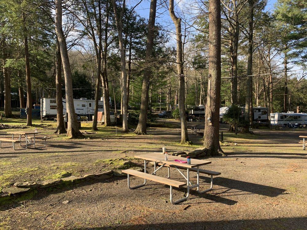 Moyers Grove Campground: 309 Moyers Grove Rd, Wapwallopen, PA