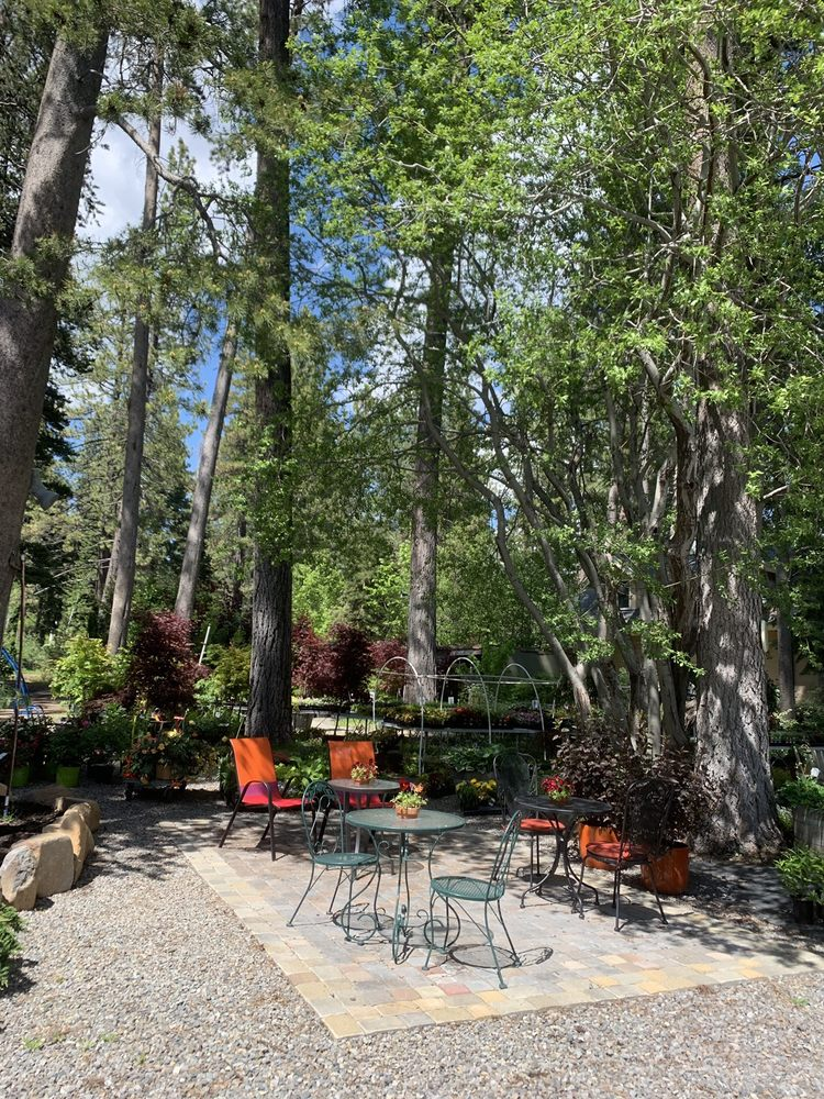 Perennial Landscape & Nursery: 6891 N Lake Blvd, Tahoe Vista, CA