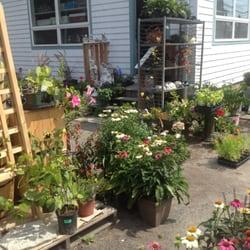 Bonnys Garden Center 22 Reviews Nurseries Gardening 41