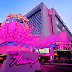 Las vegas casino and hotel phone numbers casino party favors