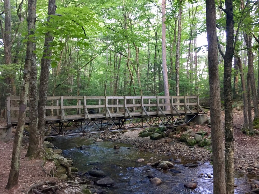 Amethyst Brook Conservation Area: Amherst Rd, Amherst, MA