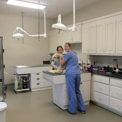 East Wake Animal Hospital 10 Photos Veterinarians 103 Green