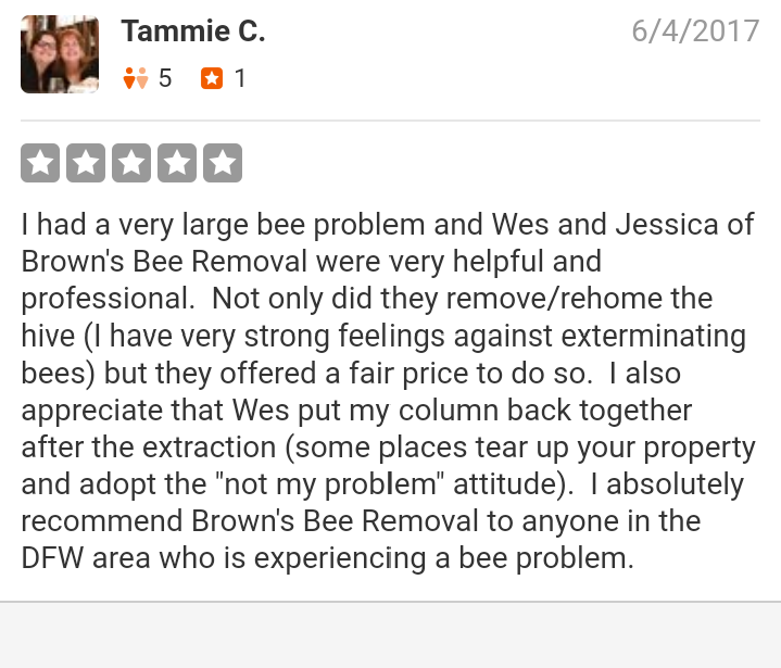 Brown's Bee Removal: 384 Hill County Road 1250, Whitney, TX