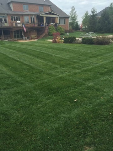 Swisher Landscaping: 3753 North Berkley, Cincinnati, OH