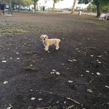 Friends Of The Sepulveda Basin Dog Park