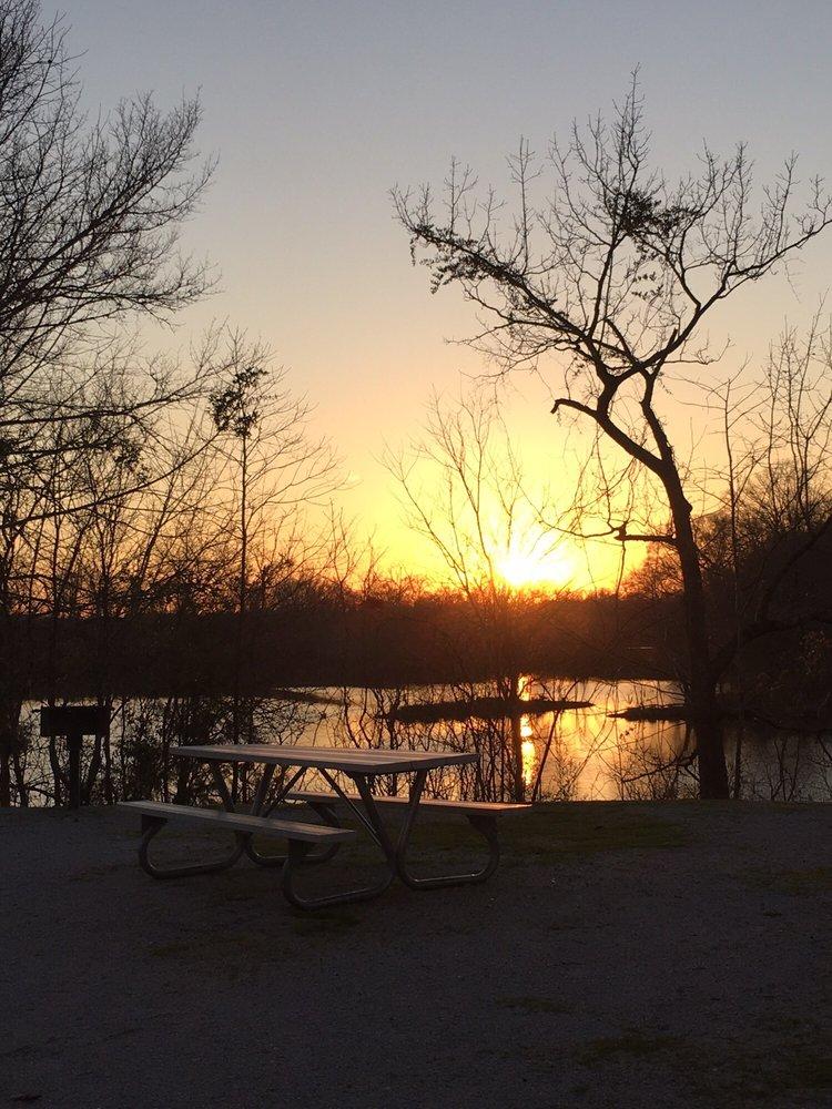 Forkland Campground: 1365 Forkland Park Rd, Forkland, AL