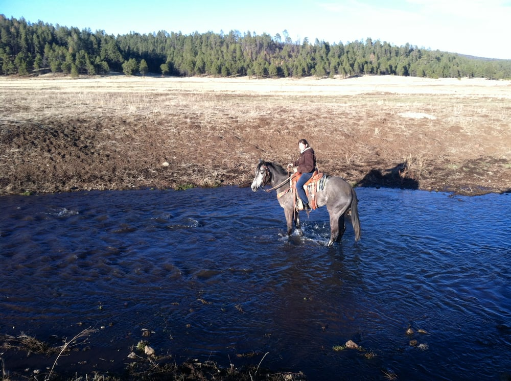 Rocking lt ranch 27 photos stables horse riding for Where can i go horseback riding near me