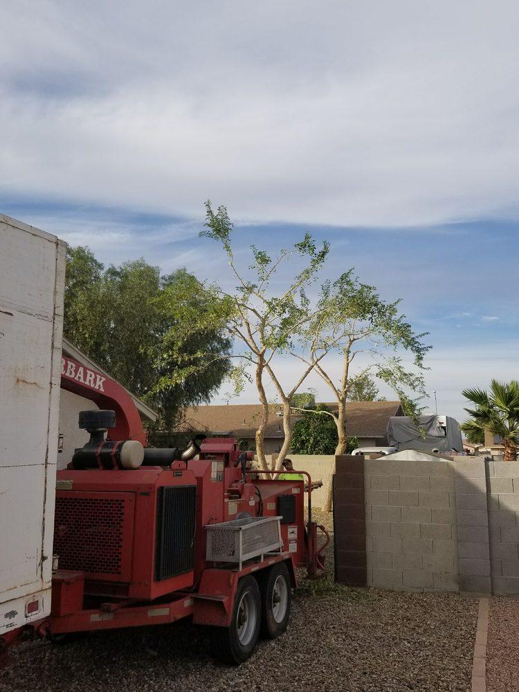 Pendleton Tree Service: 13522 S Hilltop Rd, Yuma, AZ