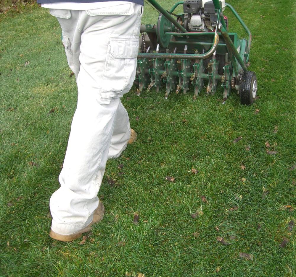 Natural Way Lawn And Tree Service